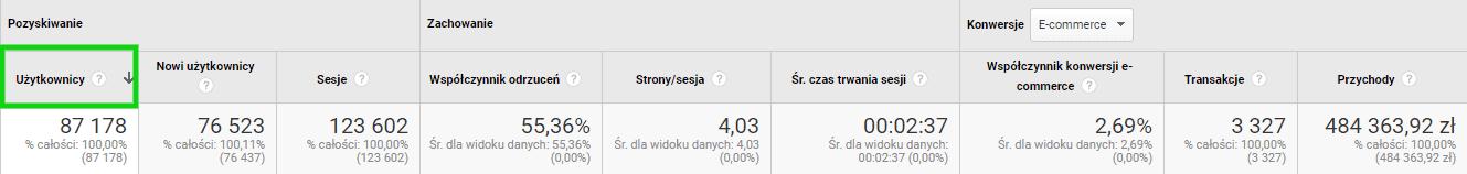 google analytics - uzytkownicy